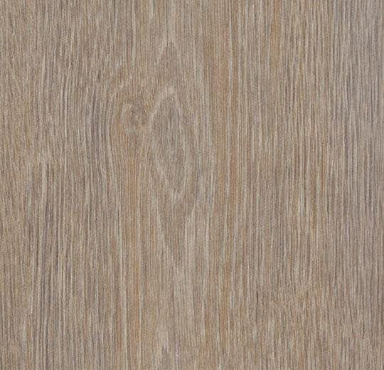 Forbo Allura Wood Steamed Oak