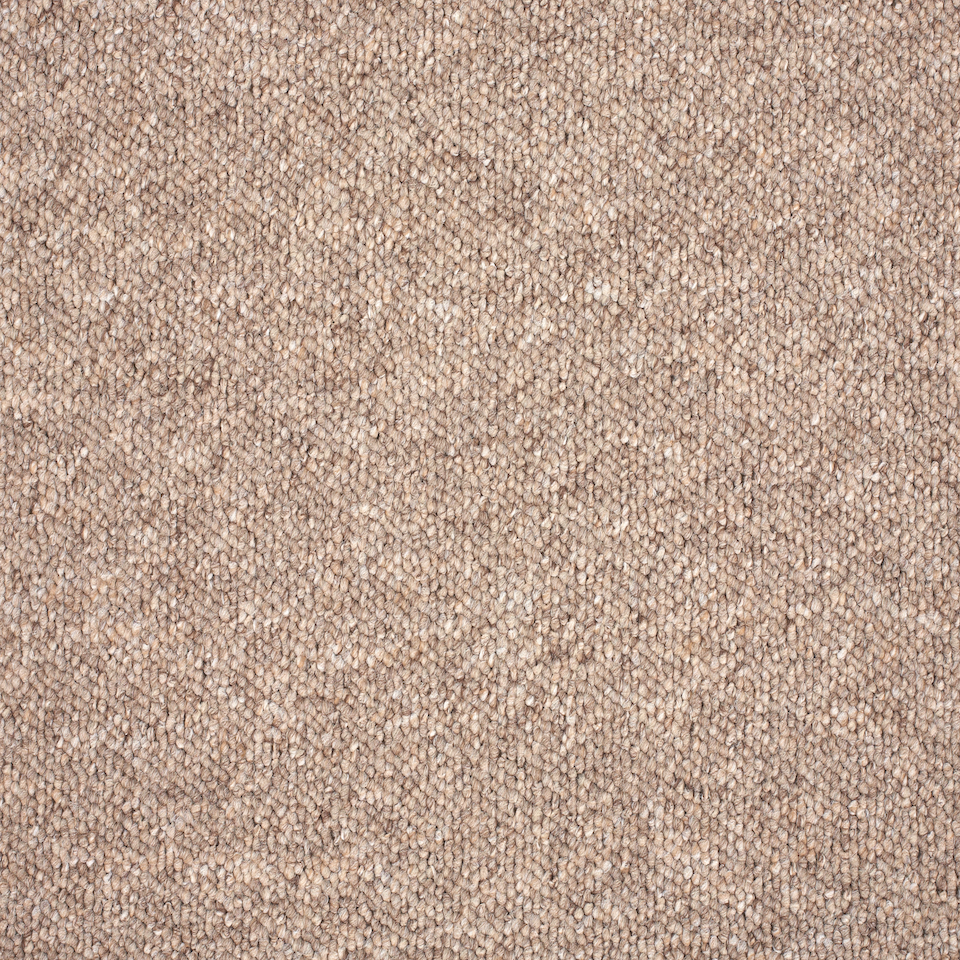 Gala Carpet Ash Brown